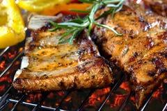 Nervures de porc grillées Image stock