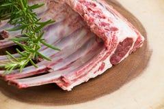 Nervures fraîches fraîches d'agneau Nervures prêtes à cuisiner Photographie stock libre de droits