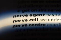 Nerw komórka fotografia stock