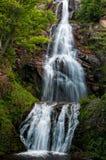 Nes da cachoeira RÔ Foto de Stock Royalty Free