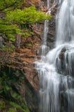 Nes da cachoeira RÔ Imagens de Stock Royalty Free