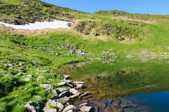Nesamovyte Lake in Carpathians Royalty Free Stock Photos