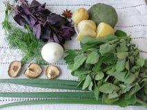 Nesseltorten-Pilzkartoffeln mit greenary Stockfoto