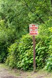 Nessun campeggio o segno di parcheggio di notte, iscrizione rossa sulla strada rurale immagine stock libera da diritti
