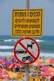 Nessun cani sulla spiaggia Fotografia Stock Libera da Diritti
