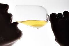 Nessun droghe, vino della bevanda Fotografie Stock