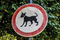 Nessun gatti permessi fotografia stock libera da diritti