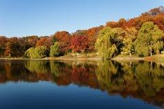 Nessun tale autunno Fotografie Stock Libere da Diritti