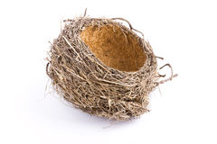 Nest Royalty Free Stock Photos