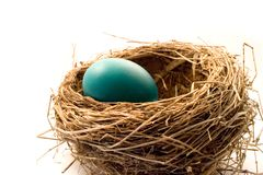 Nest Stockbild