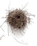 Nest On White Background  royalty free stock images