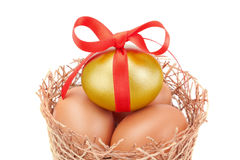 Nest and the band Easter golden eggs. Stock Photos