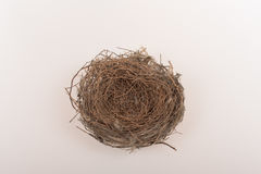 Nest of bird Royalty Free Stock Images