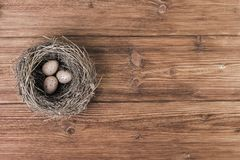 Nest or bird nest over old planks.Top view, copy space. Nest or bird nest over old wooden planks.Top view, copy space Royalty Free Stock Photography