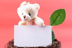 Nest with a blank card and toy teddy bear Royalty Free Stock Photo