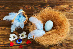Nest with blue egg Stock Photo