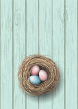 Nest with blue and pink eggs on blue wooden background, illustration Stock Photography