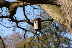 Nest box Stock Images