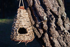 Nest box Royalty Free Stock Images