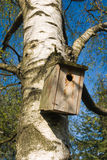Nest box Stock Image