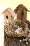 Nest box birdhouse Stock Images