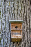 Nest box on a tree Royalty Free Stock Photo