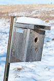 Nest Box in Winter. A nest box set up to attrac.t small birds Stock Images
