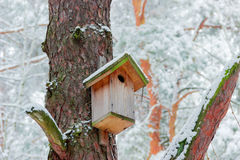 Nest box in winter forest Royalty Free Stock Photos