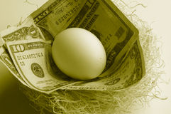 Nest of cash Royalty Free Stock Image