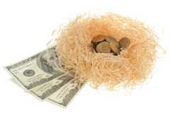 Nest with coins and banknotes isolated on white Royalty Free Stock Images