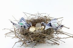 Nest of Coins and Origami Dollars. Mockingbird's nest with coins and origami crane dollar bills. Concept for nest egg and life savings. On white background Royalty Free Stock Image