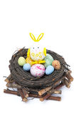 Nest with colored Easter eggs and rabbit, isolated Stock Images
