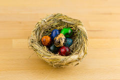 Nest with colored eggs in small quail standing on a wooden Royalty Free Stock Images