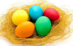 Nest with colorful Easter Eggs isolated Royalty Free Stock Photos