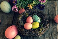 Nest with colorful eggs and flowers stock images