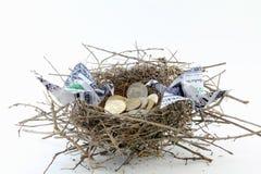 Nest der Münzen und der Origami Dollar Lizenzfreies Stockbild