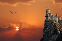 Nest der Schloss-Schwalbe Stockfotografie