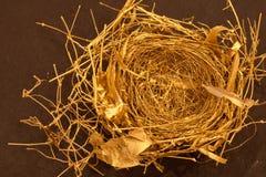 Nest des Vogels--Gesponnenes Gold lizenzfreies stockfoto