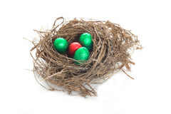 Nest for easter Stock Image
