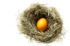 Nest with easter egg Stock Photos