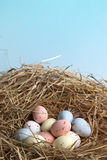 Nest with easter eggs Stock Photography