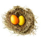 Nest with easter eggs Stock Photo