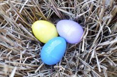 Nest of Easter Eggs Royalty Free Stock Photos