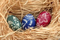 Nest with Easter eggs. Nest with three Easter eggs royalty free stock images