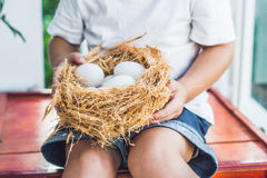 Nest with Easter Eggs in hands Stock Image
