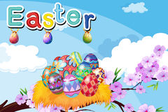 A nest with Easter eggs Royalty Free Stock Photography