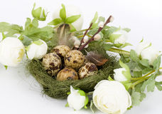 Nest with Easter quail eggs with flowers Royalty Free Stock Image