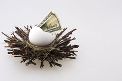 Nest egg 1 Royalty Free Stock Photos