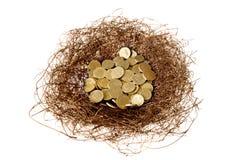 Free Nest Egg Stock Photography - 10903232