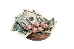 Nest Egg Royalty Free Stock Photography